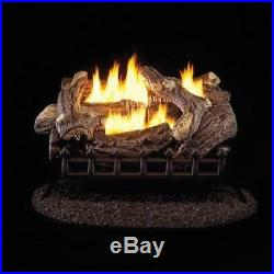 24 Inch Gas Log Set With Vent Free LP Burner Dual Burners Lava Rocks Winter US