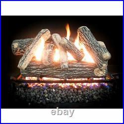 24 inch Complete Match Light Cascade Natural Gas Log Kit