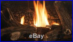 Astria Altair DLX 40 Direct Top/Rear Vent Gas Fireplace withLogs OPEN BOX BLOWOUT