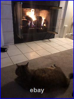Gas Log Fireplace Fireplace Insert