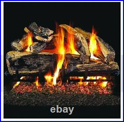 Gas Log Set with Burner