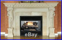 Natural Gas Fireplace Logs 24 in. 39K BTU Vent-Free Dual-Burner Adjustable Flame