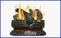Pleasant Hearth 18-in 45000-BTU Dual-Burner Vented Gas Fireplace Logs