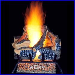 ProCom Vented Natural Gas Fireplace Log Set 18 in, 45,000 BTU, Model WAN18LA