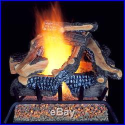 ProCom Vented Natural Gas Fireplace Log Set 24 in, 55,000 BTU, Model WAN24LA