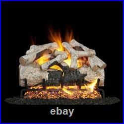 Real Fyre 24-inch Burnt Aspen Gas Logs Set