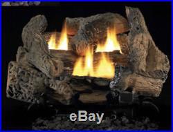 Vantage Hearth FMI Golden Oak Gas Log Vent Free 24 Natural Gas Remote Ready