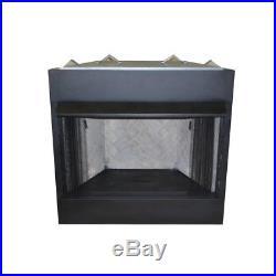 Vent-Free Circulating Firebox Insert 42 Natural Gas Liquid Propane Large Room